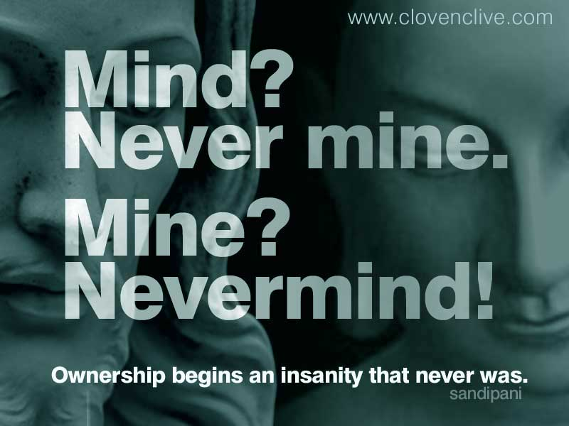 nevermindTL